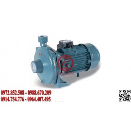 Bơm dân dụng Elanta CB 300 T - NORYL IMPELLER (VT-ELT15)